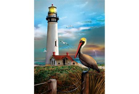 Diamond painting natuur | Knutselen voor volwassenen! Kies uit 14 afbeeldingen #12 Vuurtoren en pelikaan