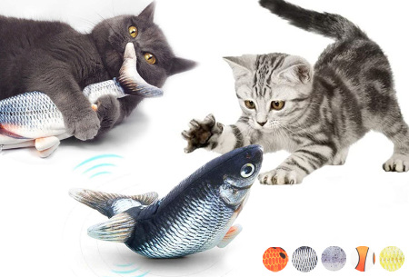 Kattenspeeltje | Bewegend kattenspeelgoed - 5 verschillende vissoorten!