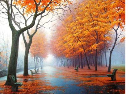 Diamond painting herfst pakket | De mooiste natuur en landschappen in najaarstinten #1