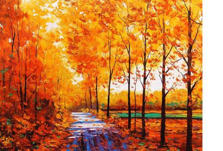 Diamond painting herfst pakket | De mooiste natuur en landschappen in najaarstinten #7