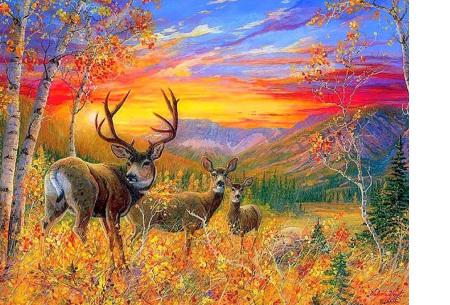 Diamond painting herfst pakket | De mooiste natuur en landschappen in najaarstinten #9
