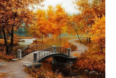 Diamond painting herfst pakket | De mooiste natuur en landschappen in najaarstinten #15