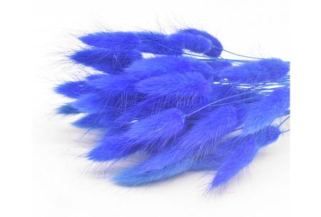 Hazenstaartjes droogbloemen boeket van 50 stuks | Kleurrijke gedroogde pluimen  Donkerblauw