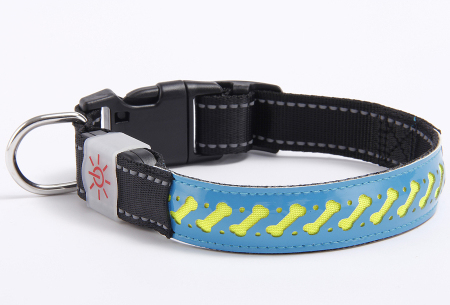 Hondenhalsband met licht | Lichtgevende halsband in 4 kleuren Blauw