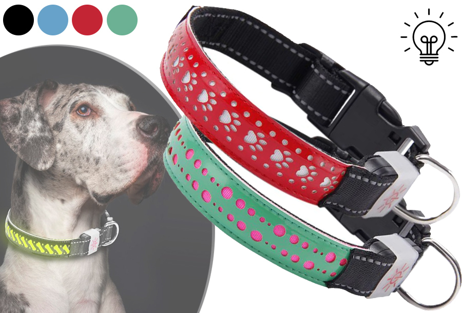Lichtgevende halsband voor je hond