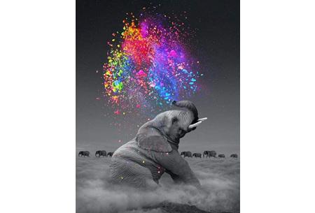 Schilderen op nummer | Kleurrijke schilderijen maken - keuze uit 17 dieren #17