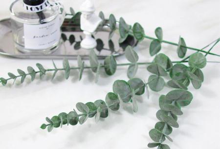 Eucalyptus kunsttakken | Sfeervolle kunstplantjes in 2 kleuren