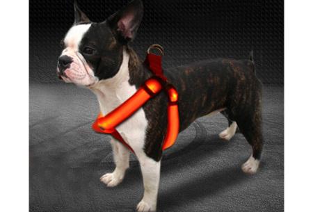 Hondentuigje met ledverlichting | Hondenharnas voor puppy's, grote en kleine honden