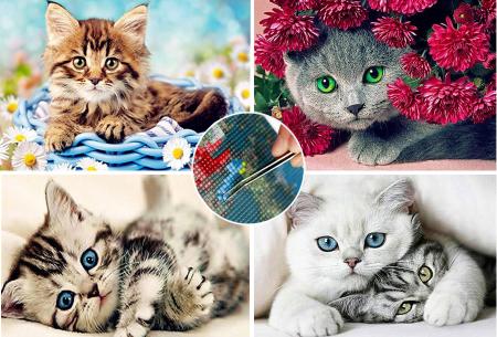 Diamond painting katten | Maak zelf de mooiste schilderijen