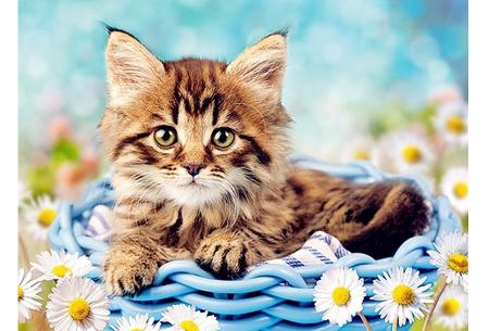 Diamond painting katten | Maak zelf de mooiste schilderijen  #2
