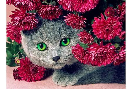 Diamond painting katten | Maak zelf de mooiste schilderijen  #5