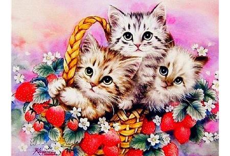 Diamond painting katten | Maak zelf de mooiste schilderijen  #6