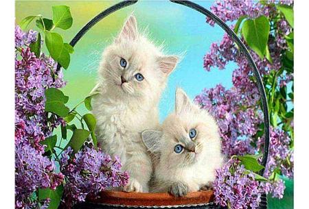 Diamond painting katten | Maak zelf de mooiste schilderijen  #8