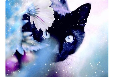 Diamond painting katten | Maak zelf de mooiste schilderijen  #11