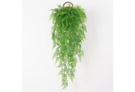 Kunst hangplanten | Prachtige sier kamerplanten in 10 soorten  #E