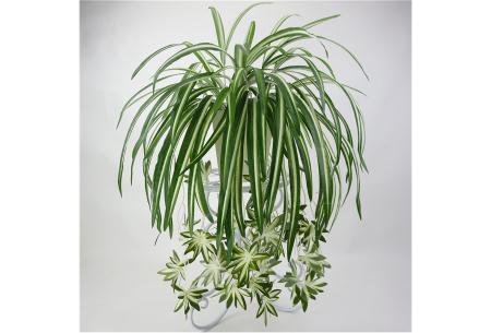 Kunst hangplanten | Prachtige sier kamerplanten in 10 soorten  #G - lichtgroen