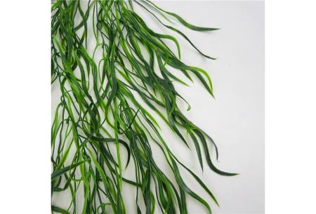 Kunst hangplanten | Prachtige sier kamerplanten in 10 soorten
