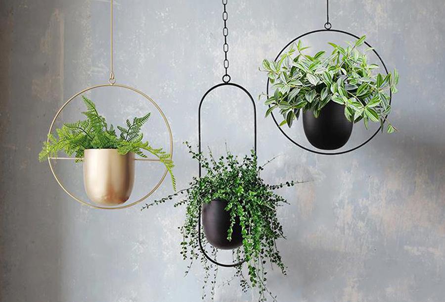 Plantenpotten voor binnen in de sale!