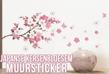 Waar Muurstickers Kopen.Japanse Kersenbloesem Muursticker T W V 34 95 Nu 7 95