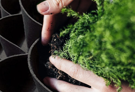 Bloemenzakken | Sfeervolle plantenzakken voor binnen of buiten