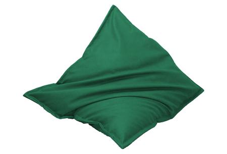 Lederlook zitzak van Your Basics   Keuze uit 20 kleuren en 3 formaten Groen