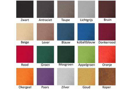 Lederlook zitzak van Your Basics   Keuze uit 20 kleuren en 3 formaten