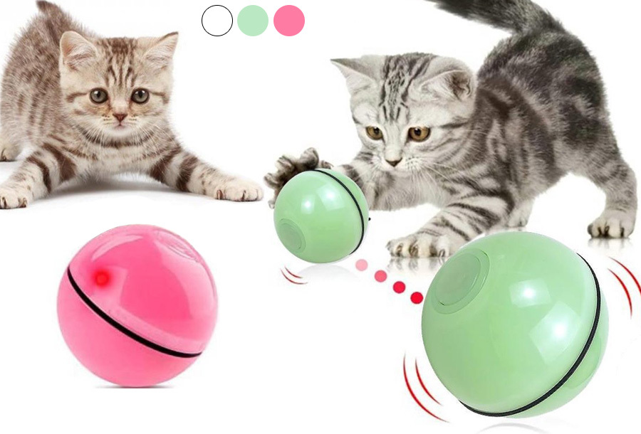 Interactief kattenspeelgoed nu in de aanbieding